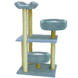 Two Bed Exercise Frame Cat Scratcher